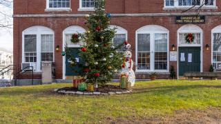 Town Hall Christmas Tree